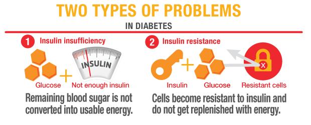 2 types of diabetes