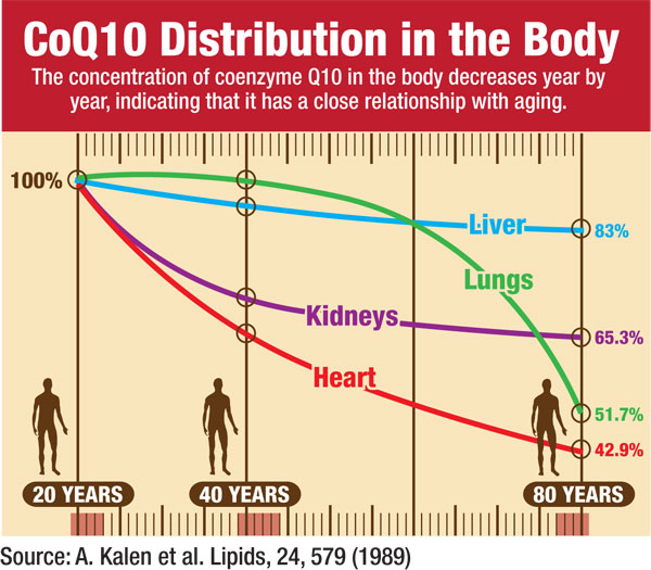 Coq10 body distribution